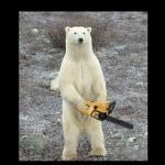 Create Chainsaw Bear Meme