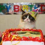 Create Grumpy Cat Birthday Meme